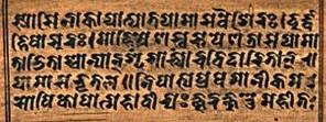 Sanskrit Writing on Wood
