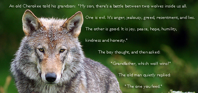 Wolf Image with text of cherokee legend.